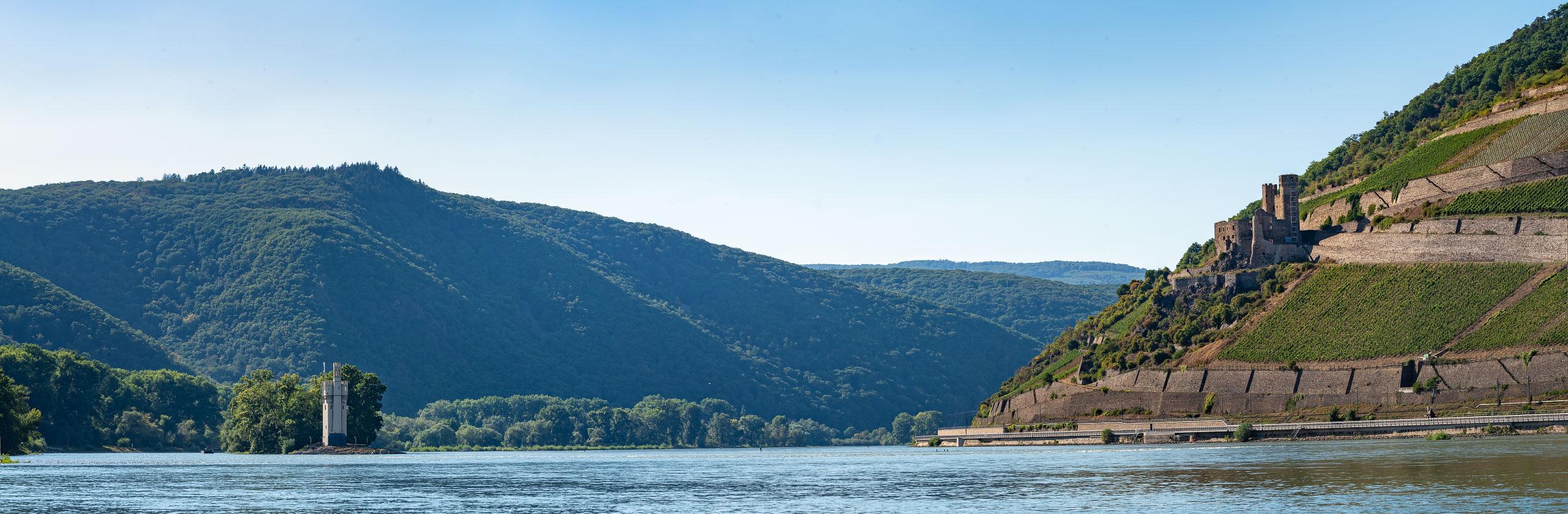 Bingen-Rheintal